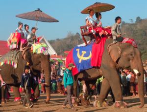 Lao Elephant