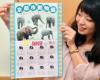 アジアゾウのカレンダー配布 京都市動物園、希望者に1万部