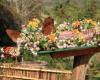 世界遺産の町、ルアンパバンの新しい観光スポット「クワンシー・バタフライ・パーク」